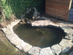 Garden Ponds Water Features Poole Bournemouth Dorset